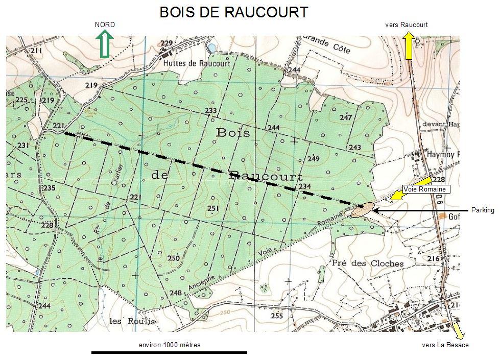Raucourt 1